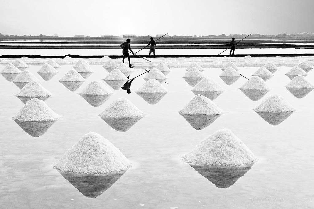 A salt field, because I am salty