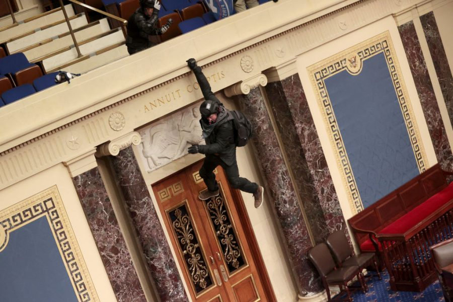 An extremist hangs from the balcony of the Senate chambers.